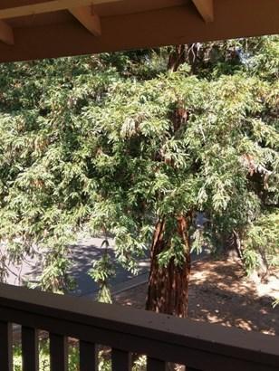 6926 Navarro Court, Citrus Heights, CA - USA (photo 5)