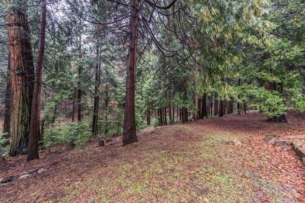 3835 Garnet Road, Pollock Pines, CA - USA (photo 5)