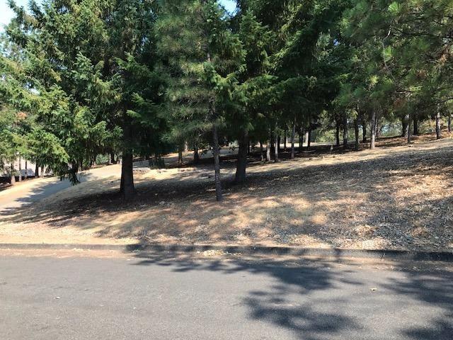 5160 Bella Vista Circle, Foresthill, CA - USA (photo 3)