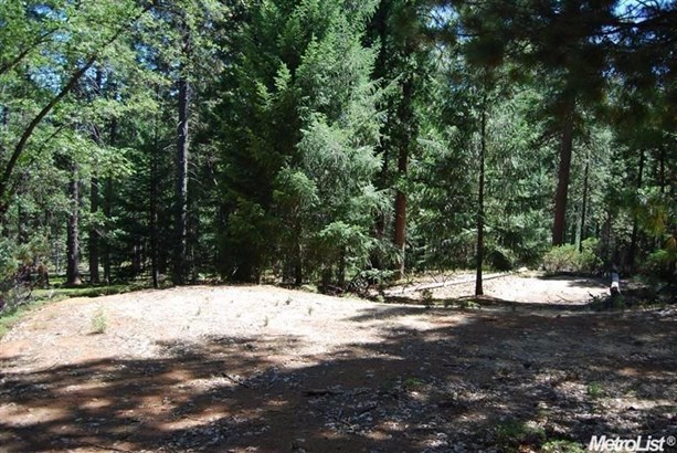 4841 Mt Pleasant Drive, Grizzly Flats, CA - USA (photo 1)