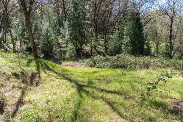 0 Lisanne Lane, Diamond Springs, CA - USA (photo 5)