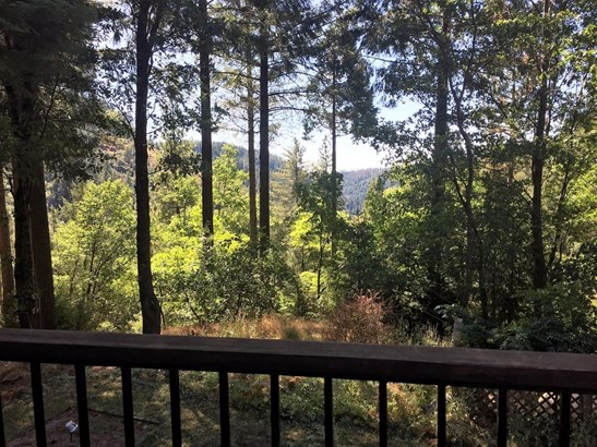 5248 Doe View Place, Pollock Pines, CA - USA (photo 4)