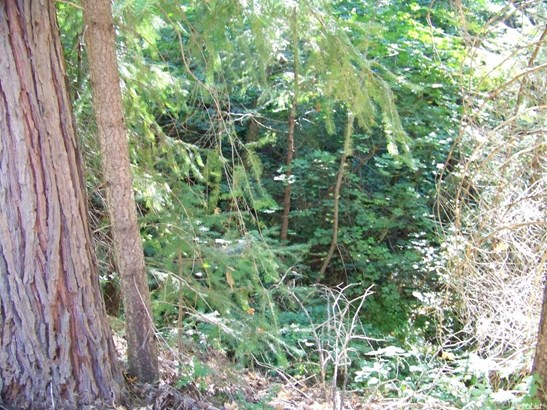 0 Starkes Grade Road, Pollock Pines, CA - USA (photo 5)