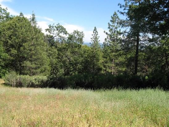 4115 Ampezo Place, Foresthill, CA - USA (photo 1)