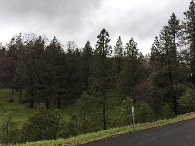 4115 Ampezo Place, Foresthill, CA - USA (photo 5)