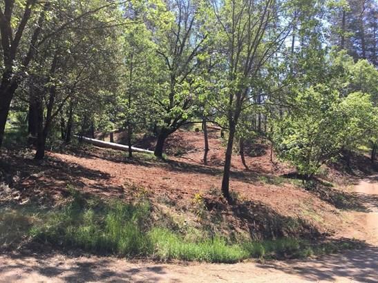 1191 Gold Ridge Lane, Colfax, CA - USA (photo 3)