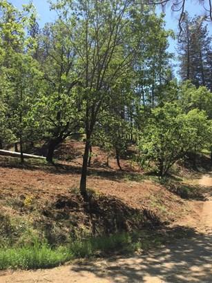 1191 Gold Ridge Lane, Colfax, CA - USA (photo 4)