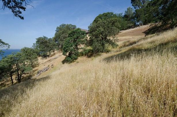 2085 Driftwood Circle, El Dorado Hills, CA - USA (photo 4)