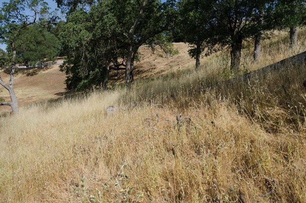 2085 Driftwood Circle, El Dorado Hills, CA - USA (photo 5)