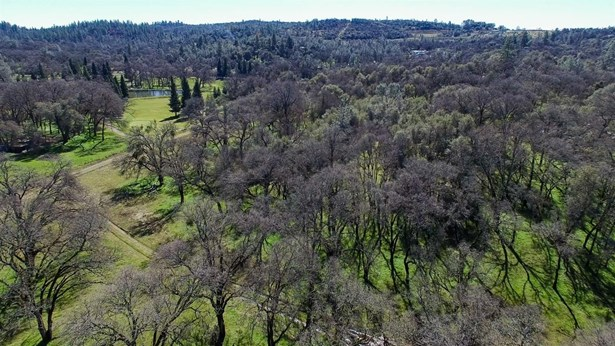 13555 Dry Creek Road, Auburn, CA - USA (photo 4)