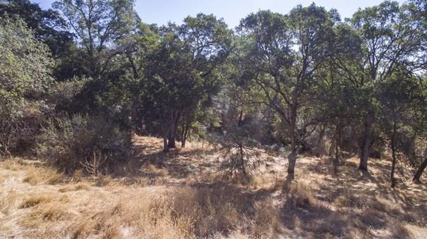 0 Vance Lane, Folsom, CA - USA (photo 5)