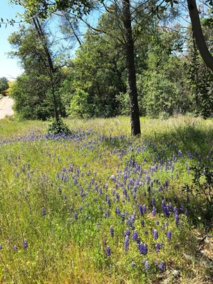 6241 Sandstone Lane, Browns Valley, CA - USA (photo 3)