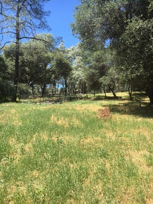13825 Dry Creek Road, Auburn, CA - USA (photo 4)