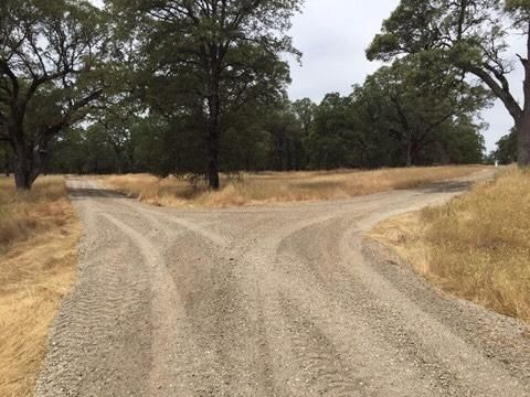 11064 Oak Mesa Drive, Grass Valley, CA - USA (photo 2)