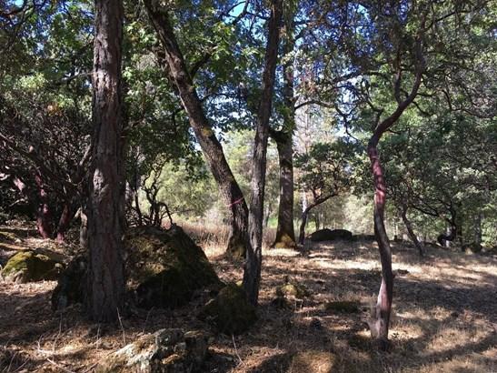 0 Shelter Cove, Greenwood, CA - USA (photo 1)