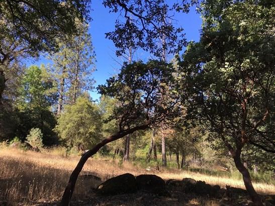 0 Shelter Cove, Greenwood, CA - USA (photo 2)