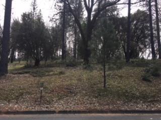 5020 Bella Vista Circle, Foresthill, CA - USA (photo 3)