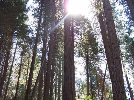 0 Rainbow Trail, Pollock Pines, CA - USA (photo 1)