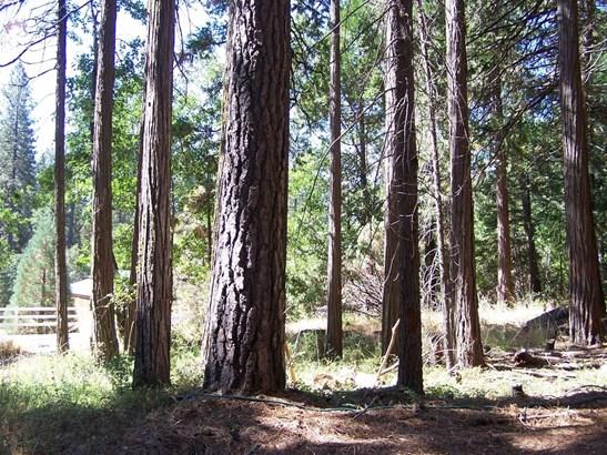 0 Rainbow Trail, Pollock Pines, CA - USA (photo 2)