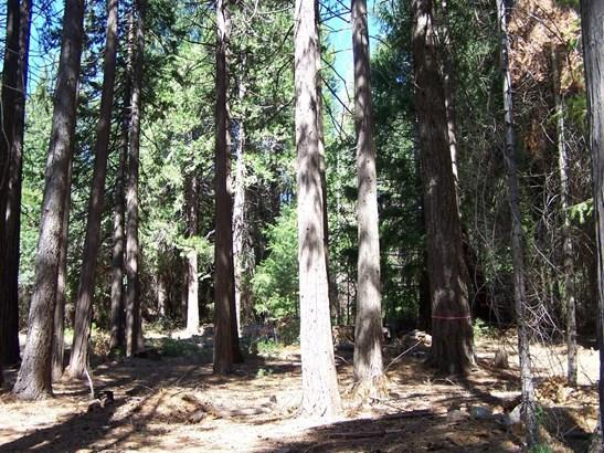 0 Rainbow Trail, Pollock Pines, CA - USA (photo 3)