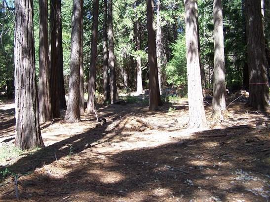 0 Rainbow Trail, Pollock Pines, CA - USA (photo 4)