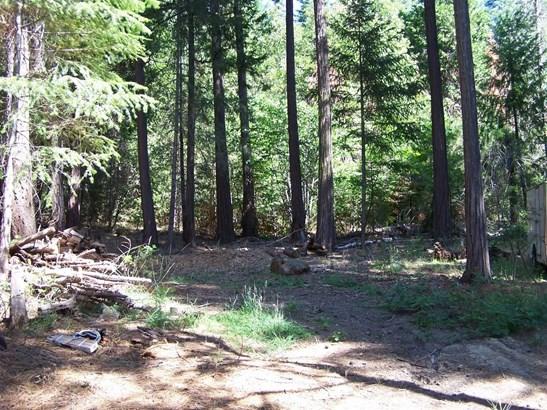 0 Rainbow Trail, Pollock Pines, CA - USA (photo 5)