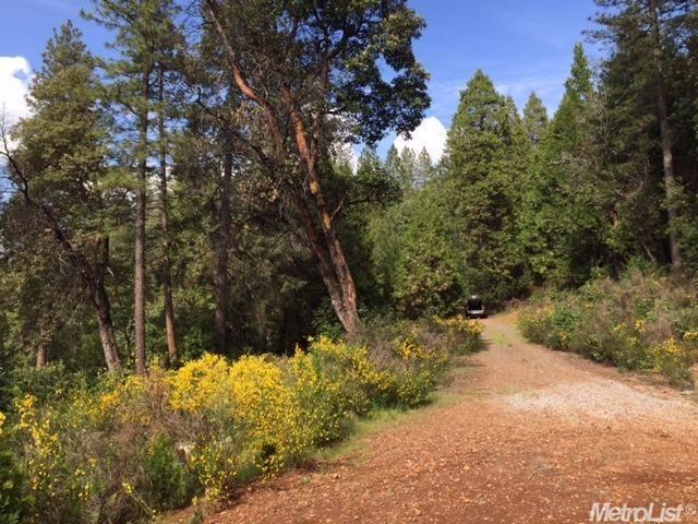 3240 Chipmunk Trail, Georgetown, CA - USA (photo 1)
