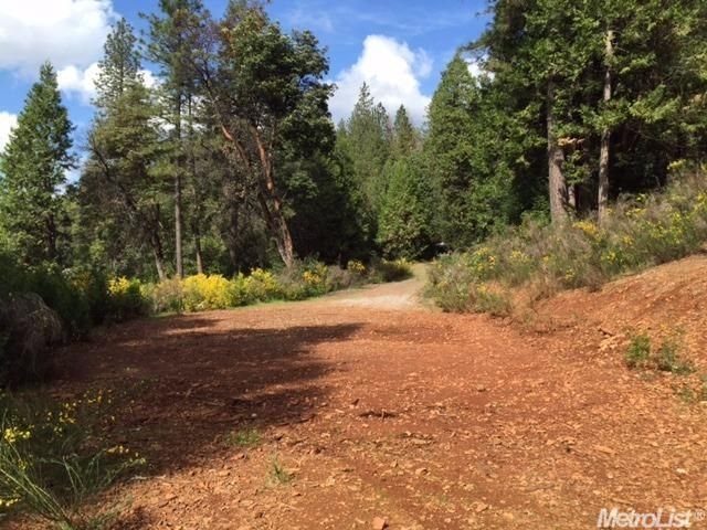 3240 Chipmunk Trail, Georgetown, CA - USA (photo 3)