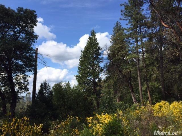 3240 Chipmunk Trail, Georgetown, CA - USA (photo 4)