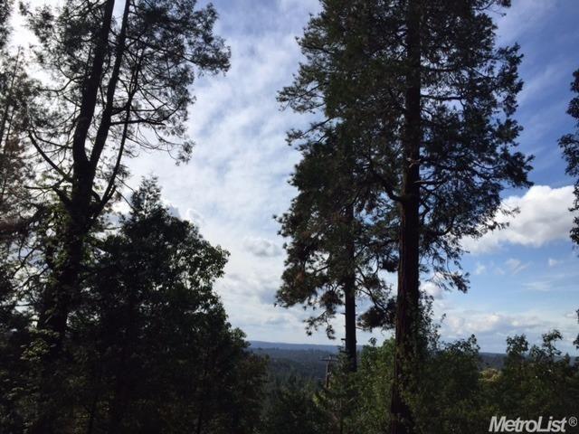 3240 Chipmunk Trail, Georgetown, CA - USA (photo 5)