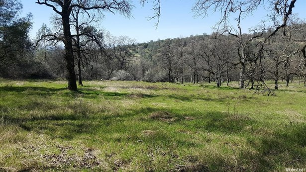 13978 Cascade Way, Browns Valley, CA - USA (photo 1)