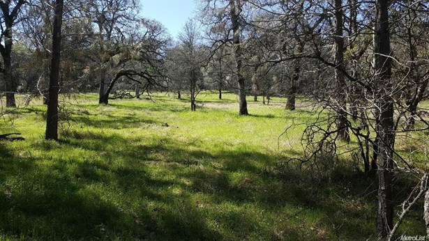 13978 Cascade Way, Browns Valley, CA - USA (photo 2)