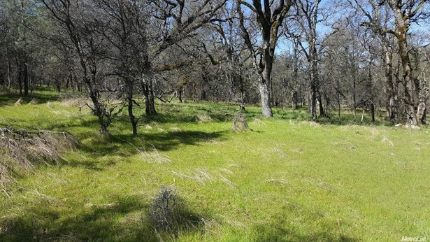 13978 Cascade Way, Browns Valley, CA - USA (photo 5)
