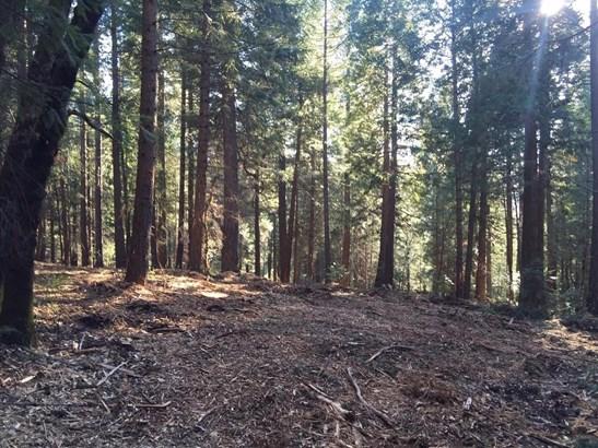0 Drum Powerhouse Road, Alta, CA - USA (photo 5)