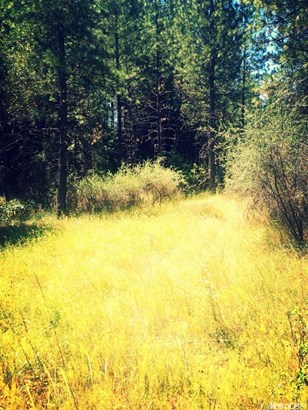 0 Canyon Way, Weimar, CA - USA (photo 4)