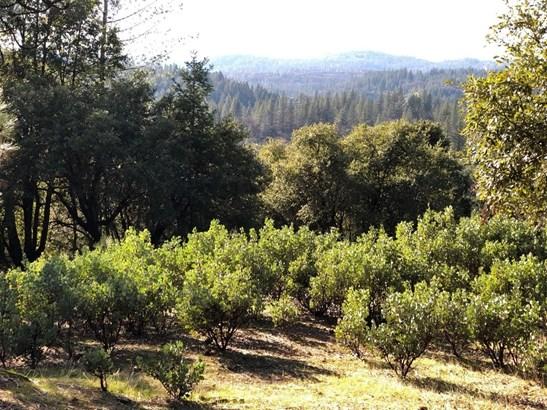 0 Norton Grade, Colfax, CA - USA (photo 1)
