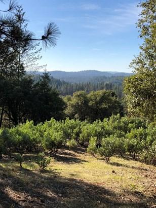 0 Norton Grade, Colfax, CA - USA (photo 5)