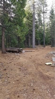 18418 Cruzon Grade Road, Nevada City, CA - USA (photo 3)