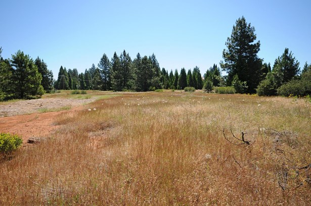 3131 Sierra Blanca Drive, Camino, CA - USA (photo 2)