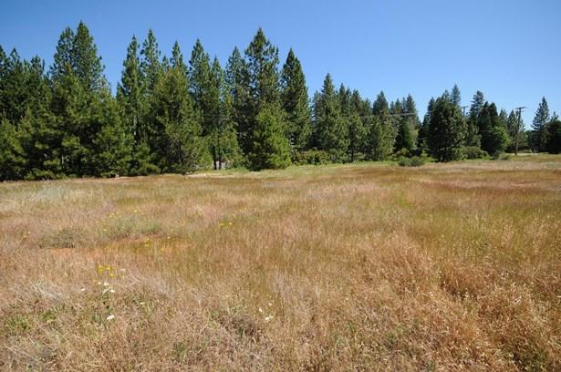 3131 Sierra Blanca Drive, Camino, CA - USA (photo 3)