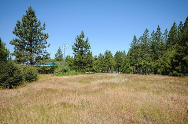 3131 Sierra Blanca Drive, Camino, CA - USA (photo 4)