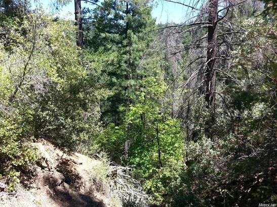 0 Diggins Hill Road, Alta, CA - USA (photo 5)