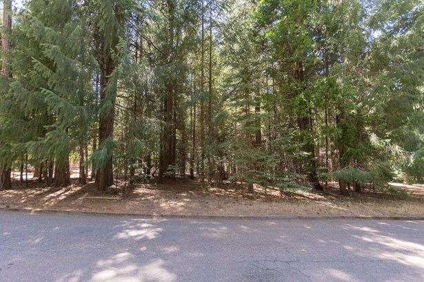 5167 Golden Aspen Drive, Grizzly Flats, CA - USA (photo 1)