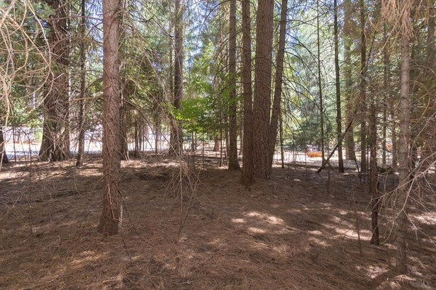 5167 Golden Aspen Drive, Grizzly Flats, CA - USA (photo 5)