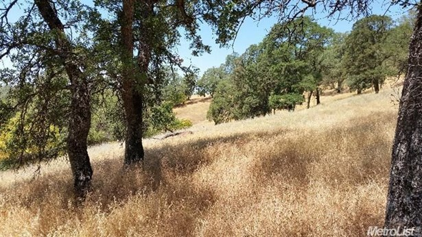 0 Olympus Drive, Garden Valley, CA - USA (photo 2)
