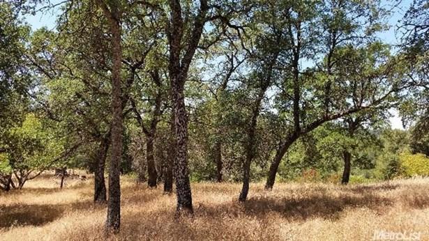 0 Olympus Drive, Garden Valley, CA - USA (photo 3)