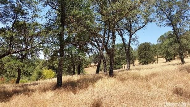 0 Olympus Drive, Garden Valley, CA - USA (photo 4)