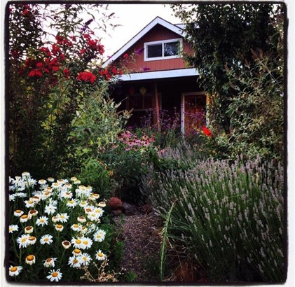 3684 Lily Lane, Shingle Springs, CA - USA (photo 1)