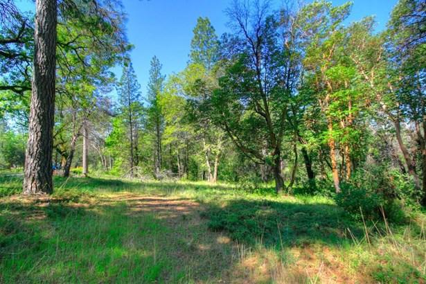 0 Whitehawk Ridge Court, Foresthill, CA - USA (photo 5)