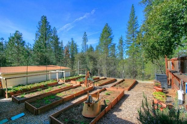 17570 Buggy Whip Court, Meadow Vista, CA - USA (photo 4)